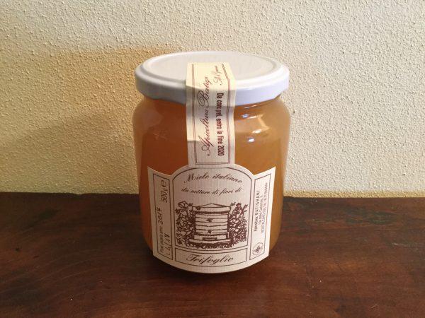 Miele italiano da nettare di fiori di trifoglio 500 gr